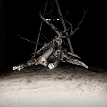 installation-totenbaume (detail)
