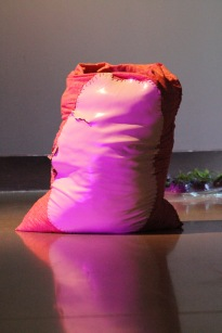 Medium: poured latex-enamel paint, yarn thread, fabric, bags of top soil, sprouting potato, cellophane, water